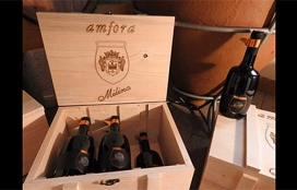 Milina Wine cellar
