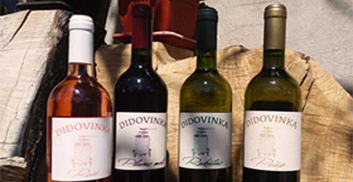 Didovinka Wine cellar