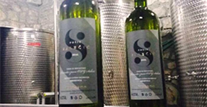 Salecic Mladen Wine cellar